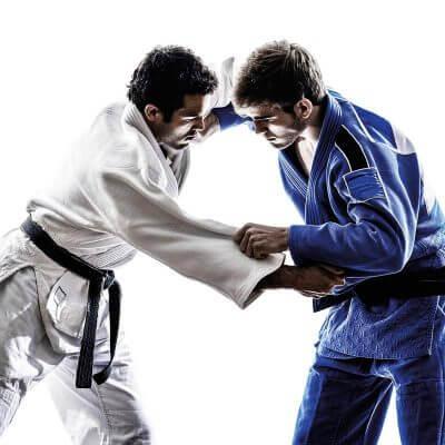 Saisie judo