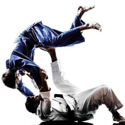 cours de judo les cercles de la forme
