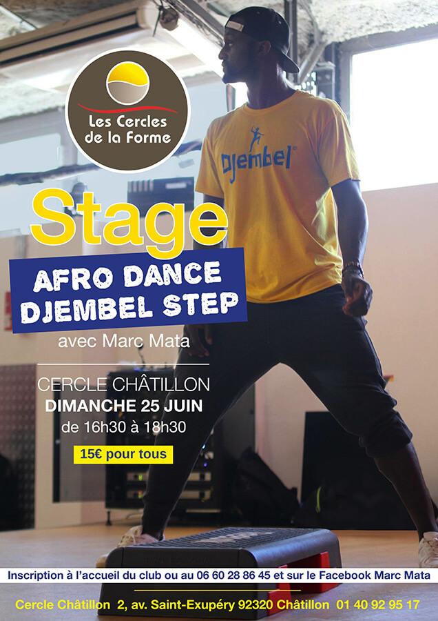stage-djembel-afro-dance-25juin17