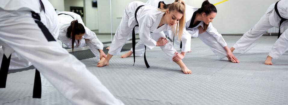 taekwondo-prerequis-cours